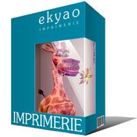 Ekyao IMPRIMERIE Info