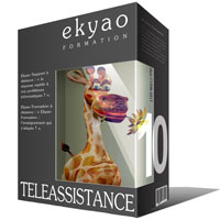 Ekyao TELEASSISTANCE SUPPORT 10