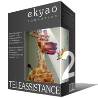 Ekyao TELEASSISTANCE SUPPORT 2