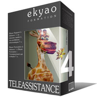 Ekyao TELEASSISTANCE SUPPORT 4