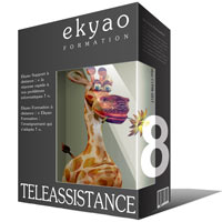 Ekyao TELEASSISTANCE SUPPORT 8
