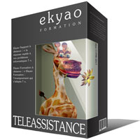 Ekyao TELEASSISTANCE SUPPORT Info